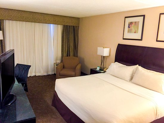 Carle Place, NY: Get comfortable in our plush Standard King Guest Room