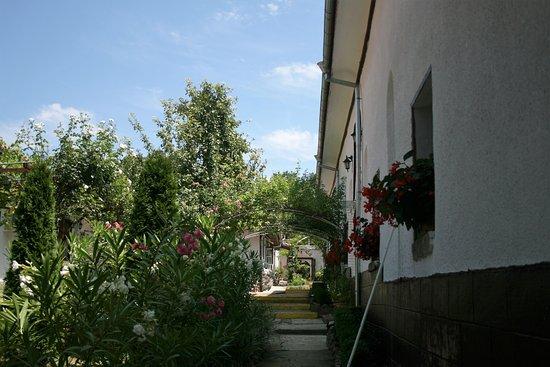Hoteles en Arbanasi