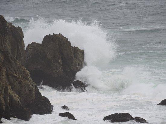 Zdjęcie Gray Whale Cove State Beach