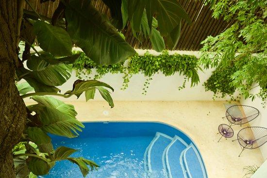 Hotel Casa Ticul: Alberca Jardín Muna