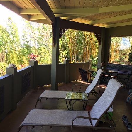 Aloha Cottage: The patio of the cottage.