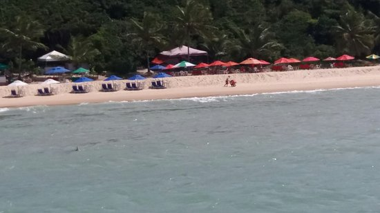 Praia de Pipa, RN: 20160811_125058_large.jpg