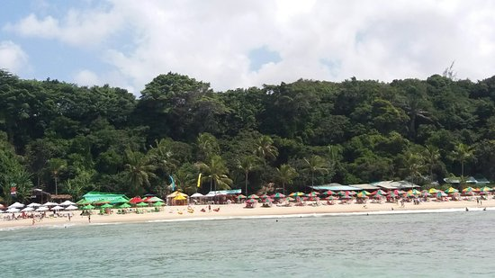 Praia de Pipa, RN: 20160811_124557_large.jpg