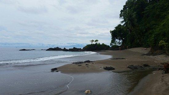 Дрейк-Бэй, Коста-Рика: 20160815_112657_large.jpg