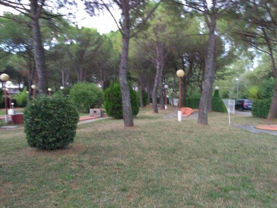 Marina Julia, Italia: IMG_20160817_185805_large.jpg