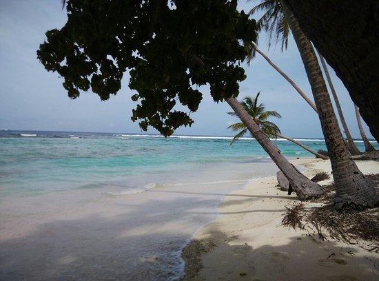 Thulusdhoo Island: IMG_20160724_130111_large.jpg