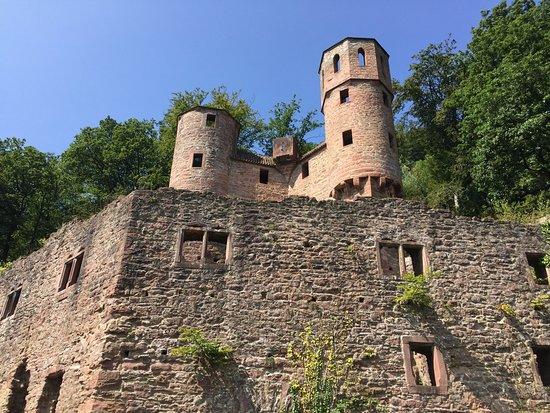 Neckarsteinach, Alemania: photo5.jpg