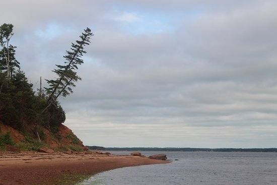Georgetown, Canadá: where we had our clam picnic - D Foster