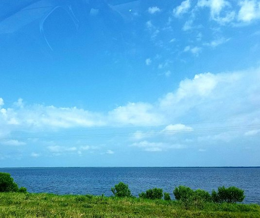 Port Saint Joe, FL: 20160811_085455_large.jpg