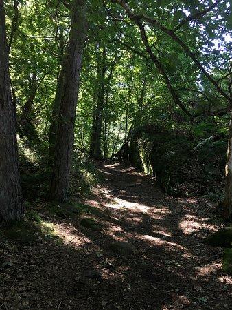 Varberg, Sweden: Borrås Skåra