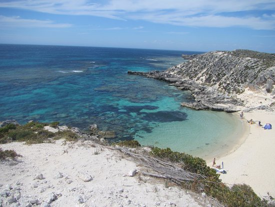 Rottnest Island, Australia: One of the beaches on Rottnest