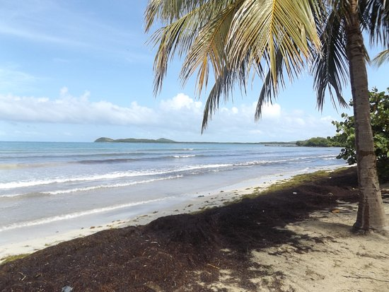 Ceiba, Puerto Rico: Thought the island views were beautiful