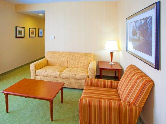 Front Royal, VA: Living room area of a suite incl. Queen sleeper sofa