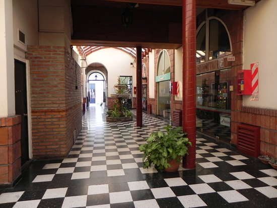 Oliva Casa de Carteras