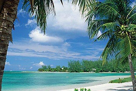Cayman Ocean Adventures Stingray City & Snorkeling Tour: photo0.jpg