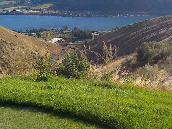 Desert Canyon Golf Resort-billede