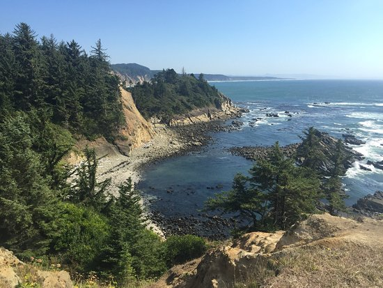 Shore Acres State Park: Follow the Simpson Trail through the woods to the amazing sea lion cove. Hundreds of sea lions p
