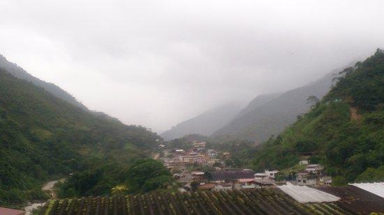 Zamora Photo
