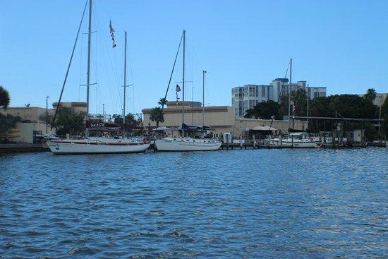 Dolphin Landings Charter Boat Center: IMG_0376_large.jpg