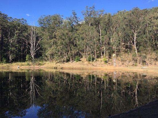 Wollombi, Australia: photo1.jpg