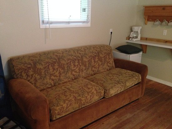 Brackendale, Canadá: Pull out sofa bed
