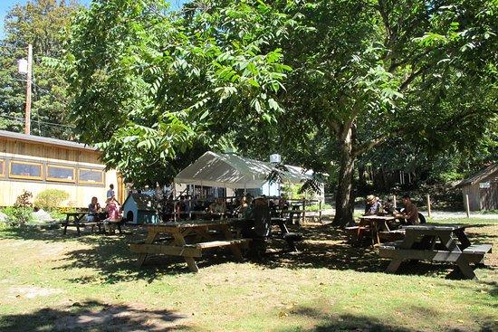 Brackendale, Canada: Dining Al Fresco