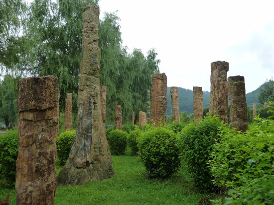 Shenyang, China: Small part of petrified forrest