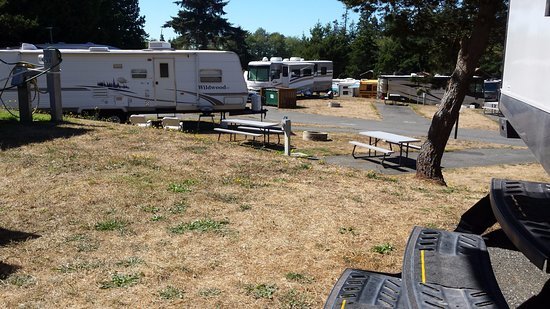 North Whidbey RV Park : view at the back of our site