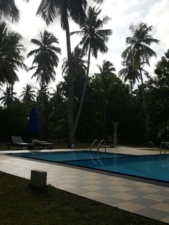 Lovely grounds and pool