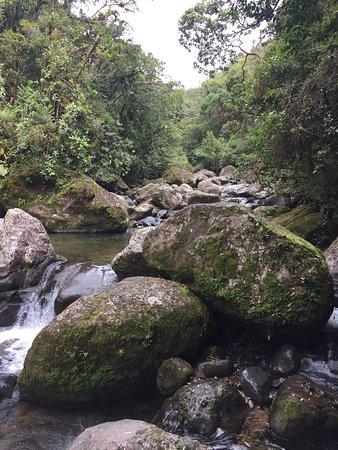 Provincia de Chiriquí, Panamá: photo3.jpg