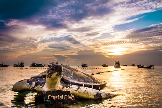 Photo of Crystal Dive Resort Ko Tao