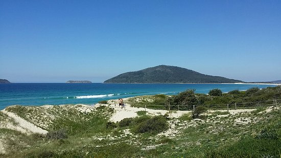 Tea Gardens, Australien: Bennets Beach, Hawks Nest gearing up for christmas. This can be Your beach too!