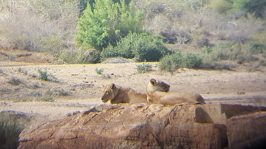 Marloth Park, South Africa: 20160817_142029_large.jpg