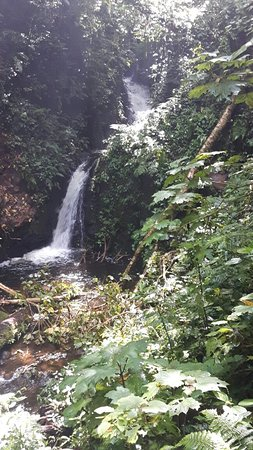 Monteverde Cloud Forest Reserve, คอสตาริกา: Monteverde Cloud Forest Biological Reserve