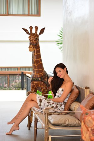 Wooden Giraffe, The Funny Lion