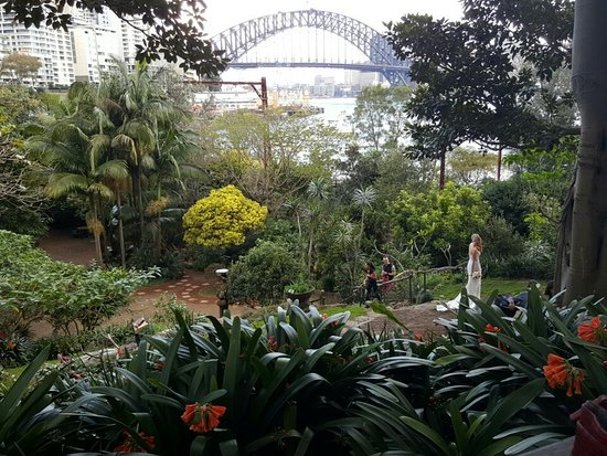 North Sydney, Αυστραλία: Great spot for a picnic or a short stroll i  Sydney