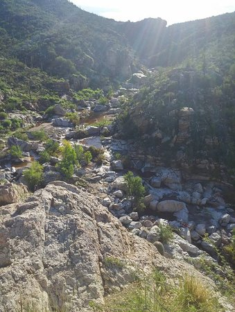 Tanque Verde Falls: Looking into the cayon
