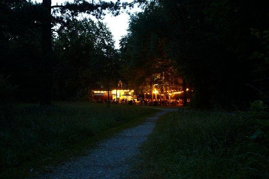 Waldgaststätte Parkhäusl: Wiese