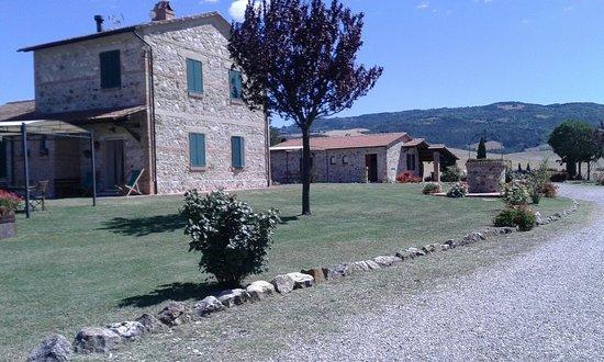 Província de Siena Foto