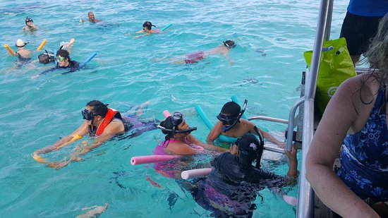 My mother 74y and kids 10y and 8y enjoying the snorkelling in the Muri Reserve.