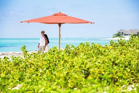 Quirimbas Archipelago, Mocambique: Beach Weddings