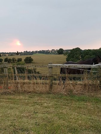 Barford Top Campsite: 20160818_200011_large.jpg