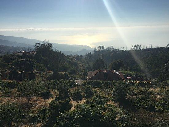 Gaula, Portugal: View