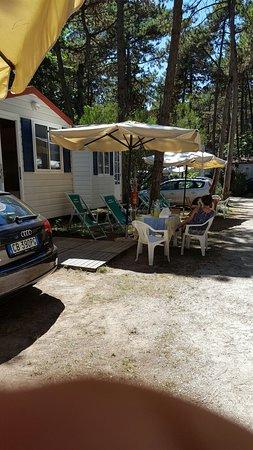 Camping Sabbiadoro: 20160808_141527_large.jpg