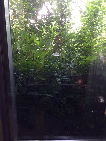 Diegem, België: Chambre avec vue sur jardin