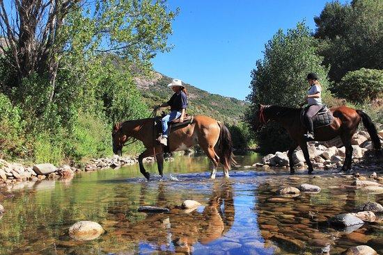 Ferme Equestre Le Ranch