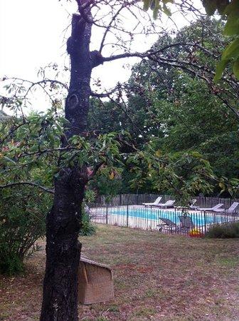Riols, Francia: realistisch beeld van de tuin op de dag van vandaag (augustus 2016)