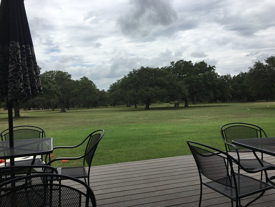 Hye, TX: View of live oaks from the patio.