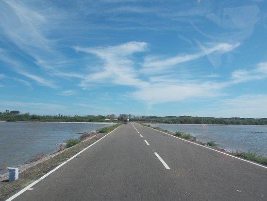 Dhanushkodi照片
