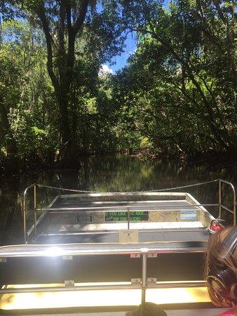 Lake Panasoffkee, FL: photo6.jpg